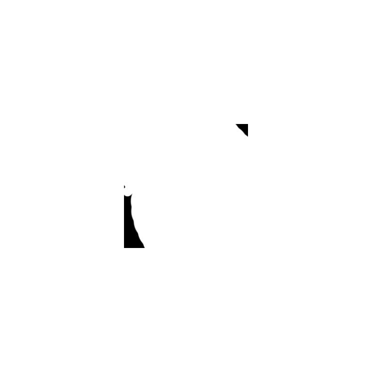 phone_w